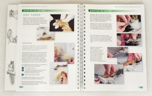 Taxidermy training book